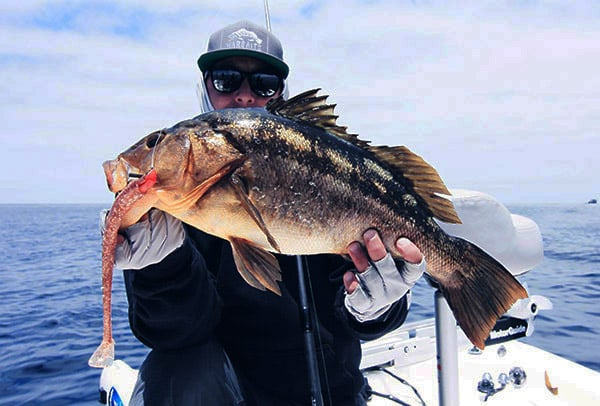 Private boat calico bass calico bass fishing tips erik for Calico bass fishing
