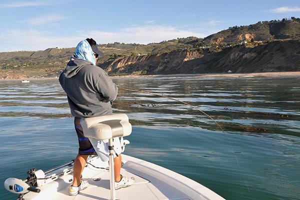 saltwater bass