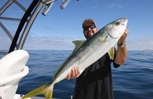 yellowtail fishing