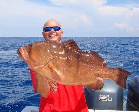 Gulf grouper season closes on feb 1 for Florida gulf fish