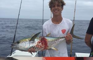 Yellowfin Tuna Foul hooked