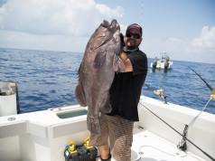 Big Fish Louisiana