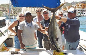 baja satfish
