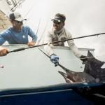 flyfishing billfish