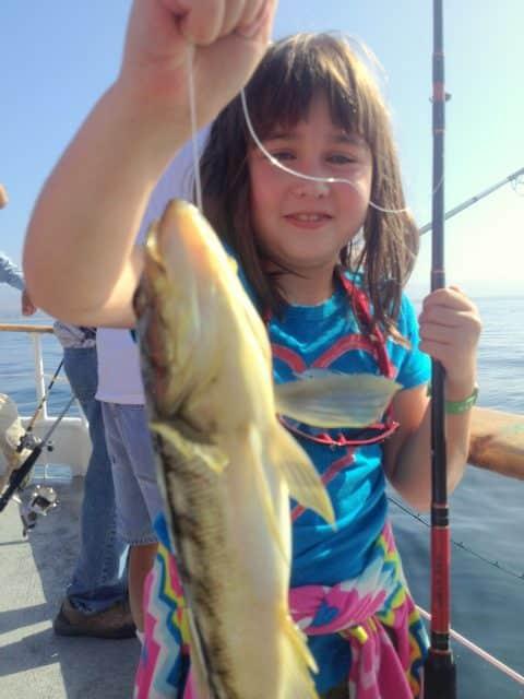 Juj_flylinecalico - Paddy Fishing