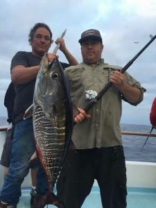 big bluefin bite