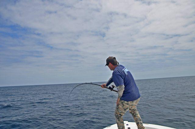 Rainshadow Tuna