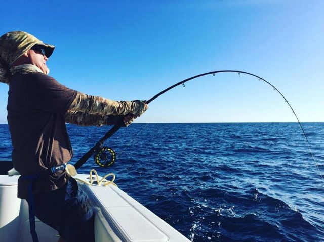 saltwater fly