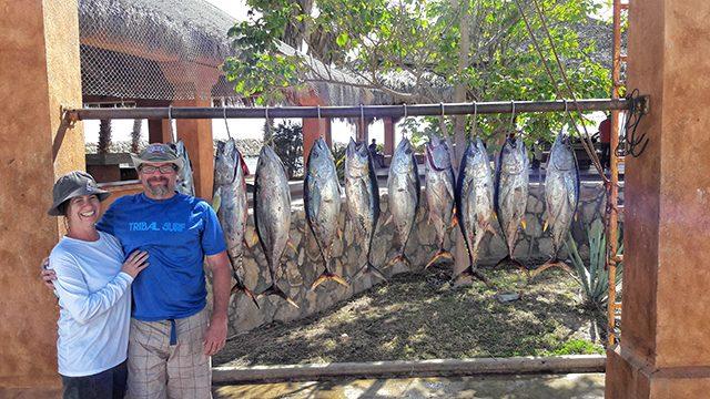 Baja Bytes Yellows - Baja Bytes fishing
