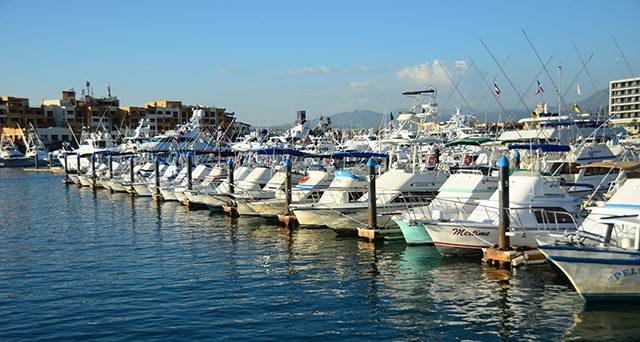 Boats - Baja Bytes fishing