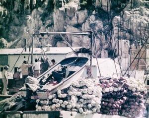early boats
