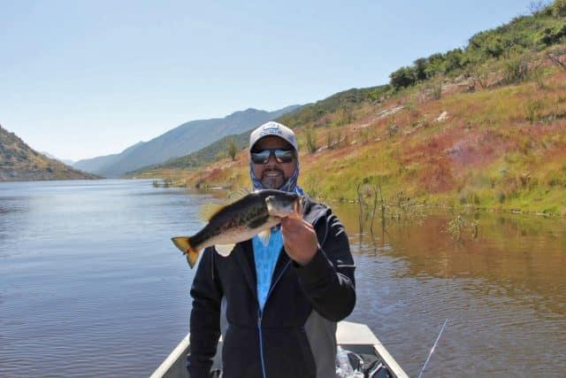 fishing reports ali Haze