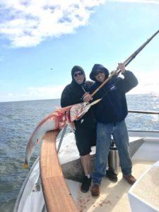 windy weather white sea bass fish