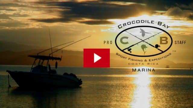 Crocodile Bay Launches International Marina for fishing video