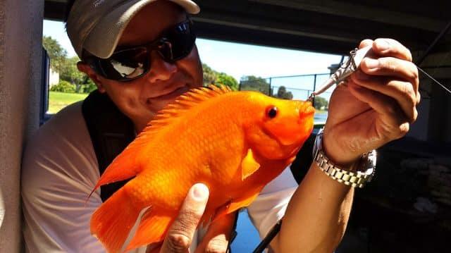 exotic fishing