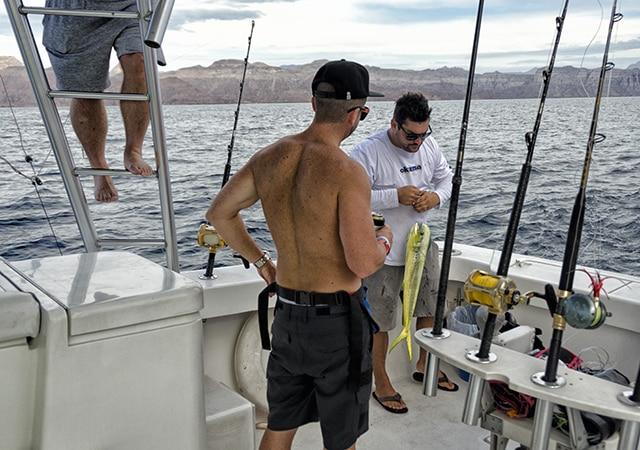 dorado fishing