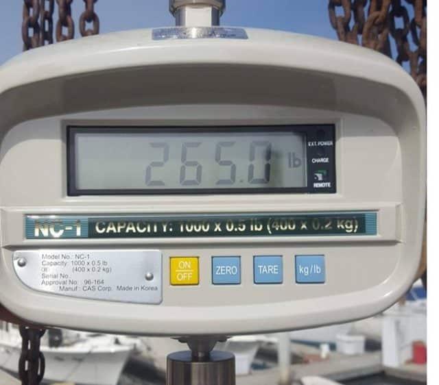 california state record yellowfin tuna weight