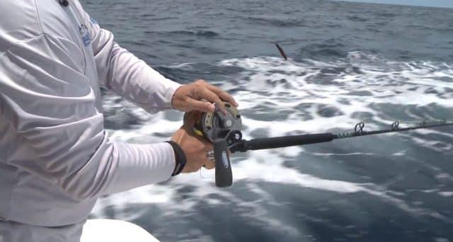 circle hook hookset timing for dropback baits