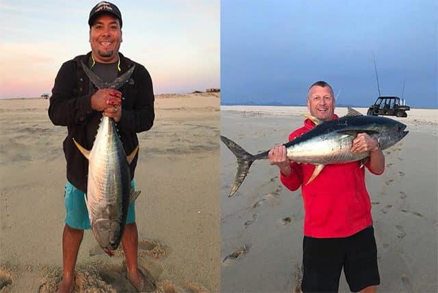 beach tuna caught