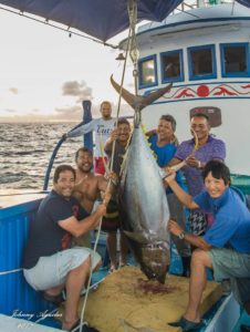 Greenstick Is Approved For Costa Rica - greenstick fishing