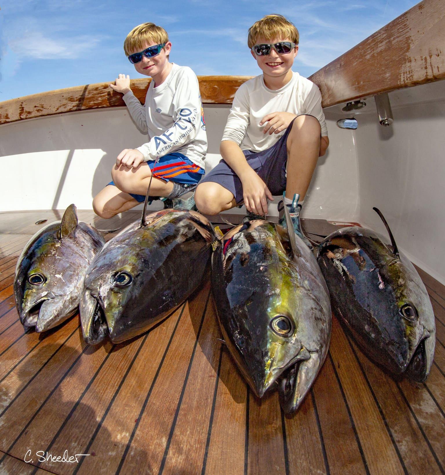 Feast Billfish CVL