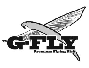 GFly Flying Fish Fishing Baits