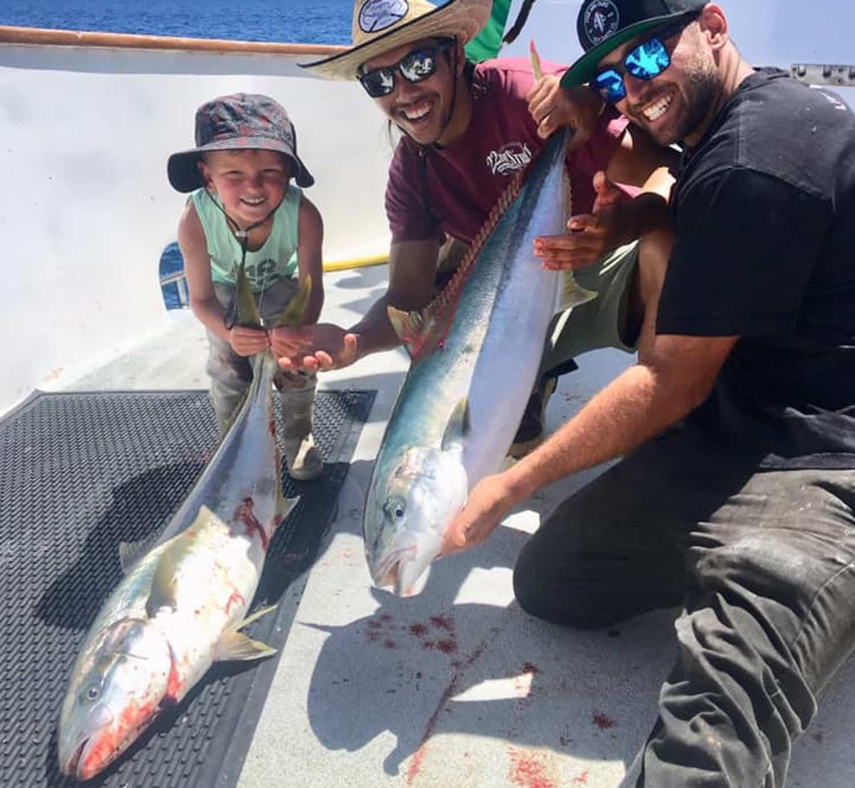 yellowtail fishing in southern california