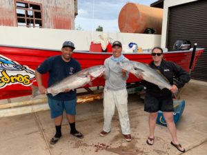 Baja Fish Report
