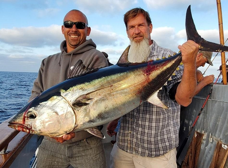 socal bluefin