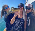 Dana Wharf fishing trips