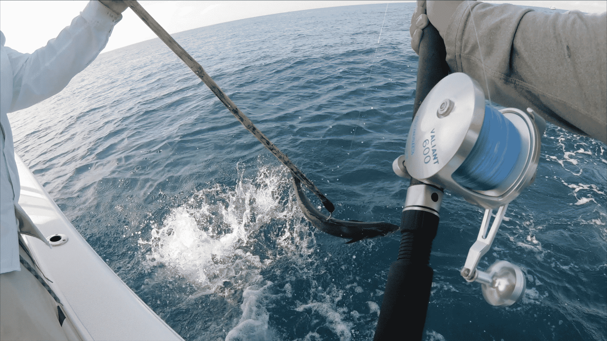 kingfish fishing tips