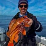 Baja best rockfish