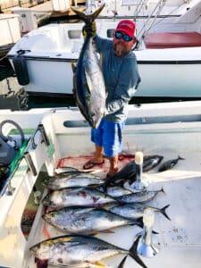 Baja limit of tuna