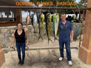 Gordo Banks Baja Catch