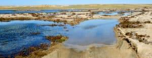 Laguna Ojo de Liebre
