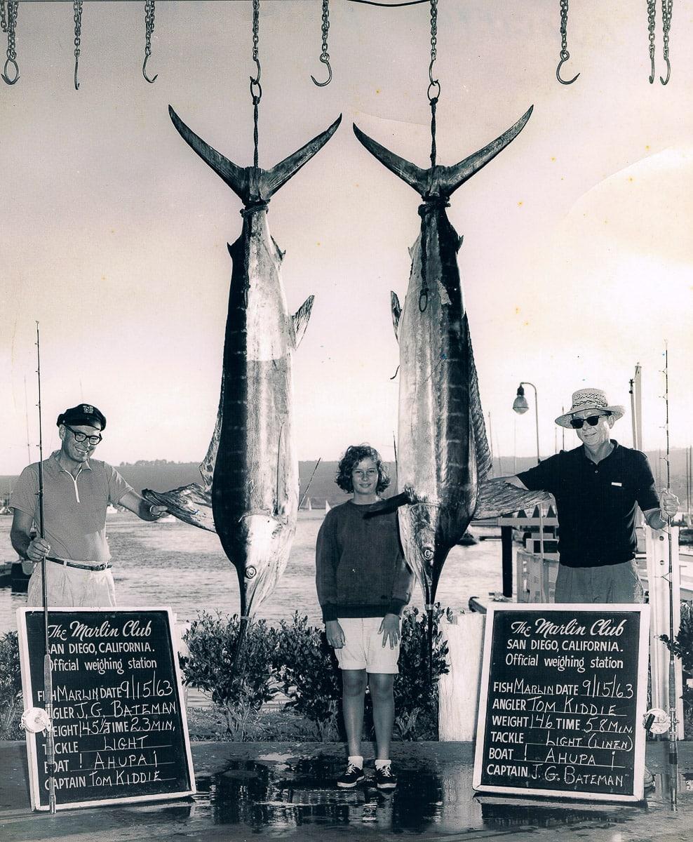 Bateman Kiddee marlin