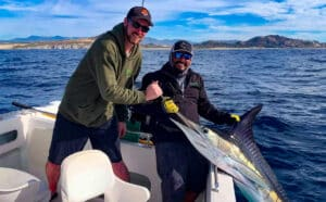 Baja striper release