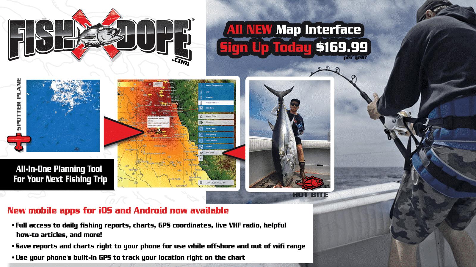 Fishdope fishing reports