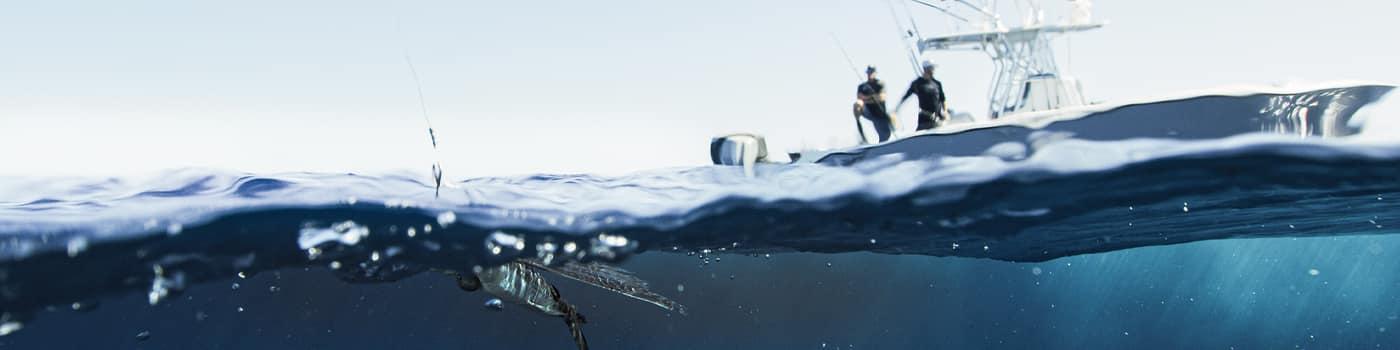 offshore fishing show