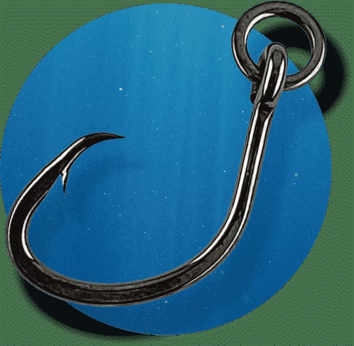 Nautilus Circle HD with Ring