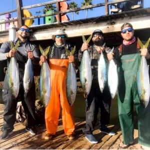 San Quintin bottomfish