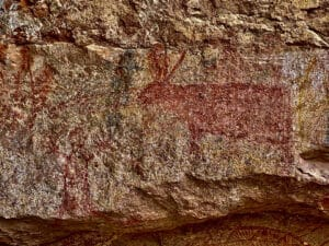7000 year old drawing