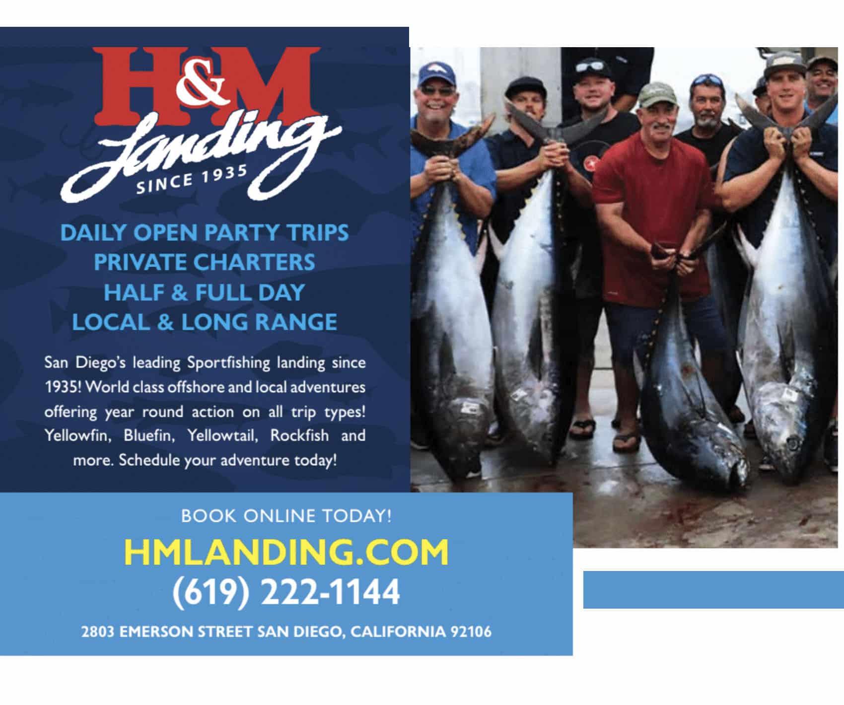 H & M Landing