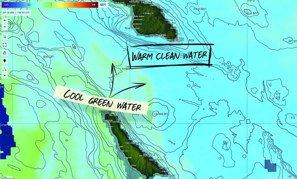 chlorophyll charts