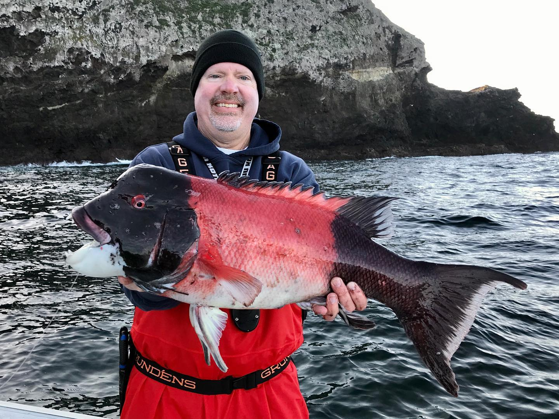 rockfish opener