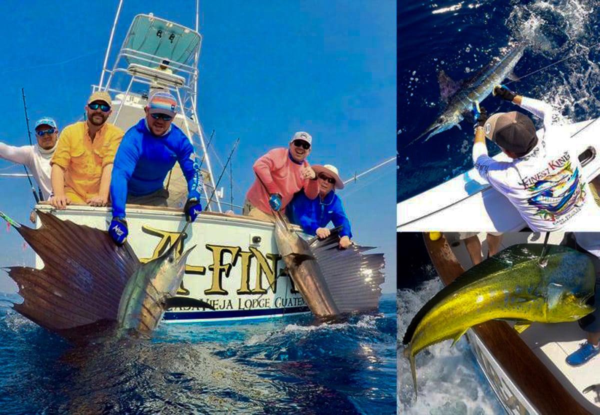 Pacific sailfish double