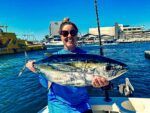 Los Cabos Yellowfin