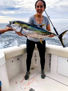 Baja yellowfin