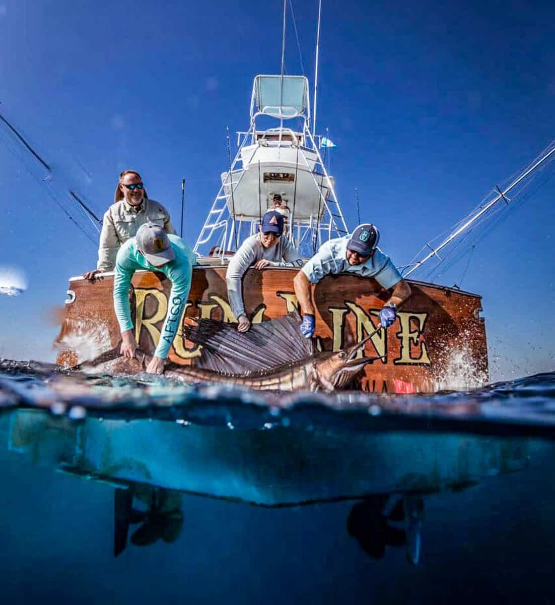 Sailfish phot op