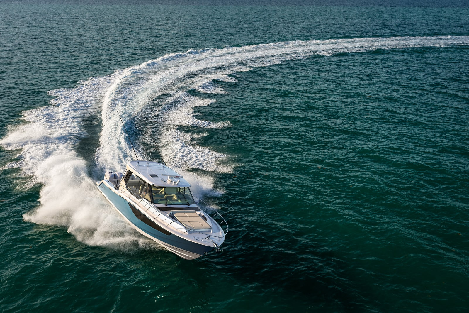 Whaler review